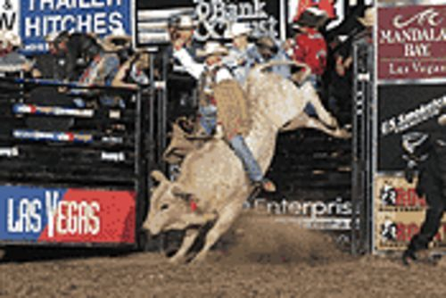 Pass the buck� to a load of bull-riders.