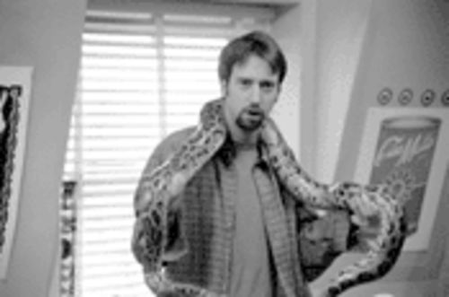 Studio execs seem to have spliced in MTV's Tom Green as a sure-fire gimmick