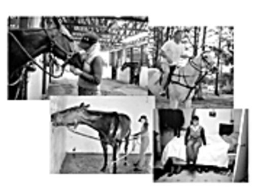 Octavio, top right, warms up a mare named Snow White. Ann, finishing her 12-hour day, bottom right, can tell horses' emotions from the position of their ears. The angle in both photos on the left shows trusting calm.