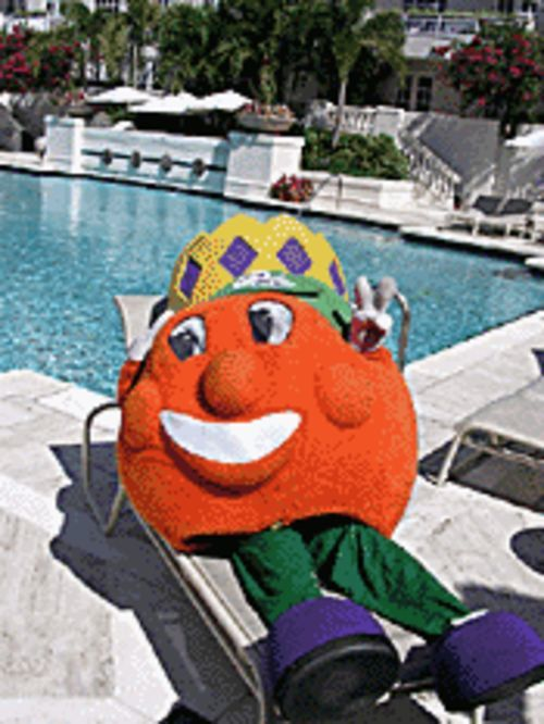 Stop slacking, Obie!  The Orange Bowl's this Tuesday!