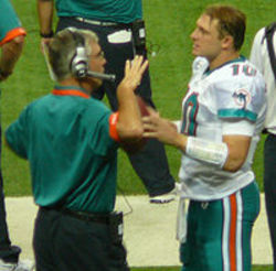 David Lee, Dolphins Quarterbacks Coach