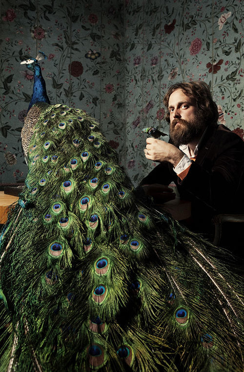 Iron & Wine & birds.