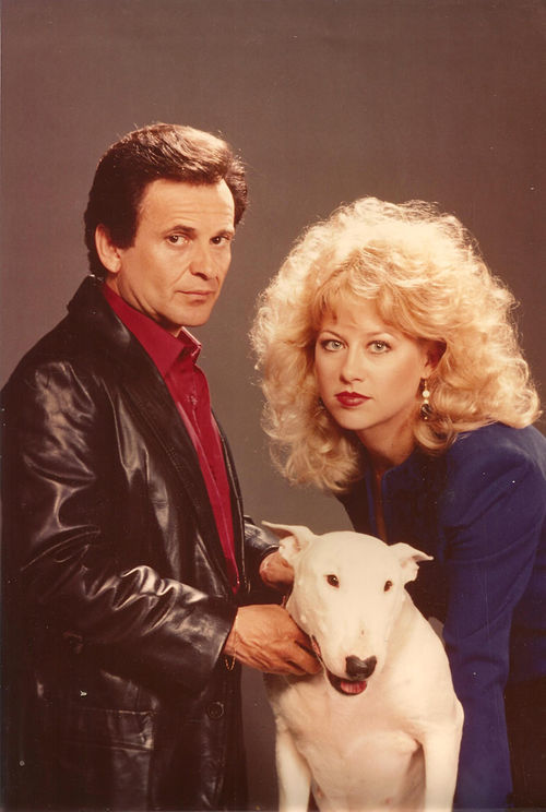 Half Nelson, Jackson's sitcom pilot with Joe Pesci, lasted six episodes.