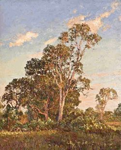 "An Everglades scene by A.E. ""Beanie"" Backus"