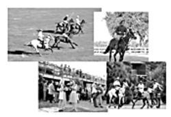 Mr. Straub has paid more attention to real estate like the condos, pictured at bottom right, than the grandstand or the playing field. At top right, Pablo sprints a mare during daily exercises.