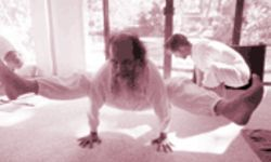 Poseurs, beware: Yogi Hari insists yoga is more than a physical practice