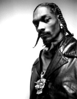 Like many modern rappers, Snoop knows more about the Dogghouse than the White House