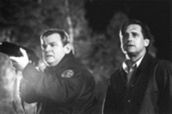 Rube awakening: Brendan Gleeson (left) is the dependable sheriff to Bill Pullman's handsome youngish hero