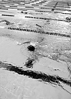 Fort Lauderdale's pools have hosted ten world records, the most recent by Michael Phelps in 2002.