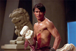 Tony Jaa: No wires, just 125 pounds of fury.