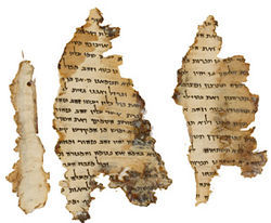Fragments of a Dead Sea scroll