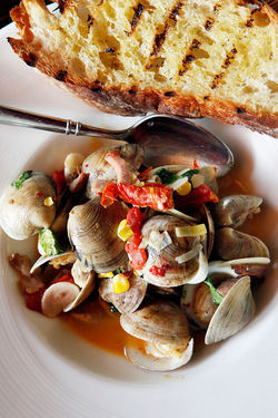 Cedar Key clams: with tasso, corn, tomato, cilantro, Chardonnay, and grilled ciabatta.
