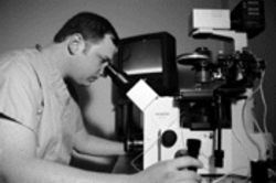 Dr. Michael Graubert of the Palmetto Fertility Center of South Florida injects sperm directly into eggs using a state-of-the-art microscope
