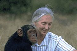 "Jane Goodall: ""Everybody's got something to hide except for me and my monkey."""