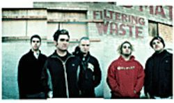 You know New Found Glory's punk; they've got, like, piercings and stuff.