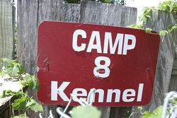 The name Camp 8 Kennel came from the Eddie Murphy/Martin Lawrence movie Life.