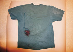 Pinal County authorities declined to send Puroll&#039;s bloody T-shirt to a state crime lab for testing.
