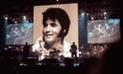 Elvis: still larger than life