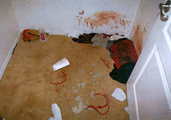 This &quot;torture closet&quot; was used to abuse a Phoenix kidnapping victim  whose family could not pay his ransom; he was rescued by police after four days of being beaten, stabbed, sodomized, and burned with a  blowtorch.