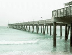 Surf within 100 feet of this pier and prepare to get a ticket