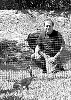 Steve Rosen spent an estimated $50,000 rescuing more than 300 jackrabbits at Miami International Airport. He's pictured here with one of the young ones.