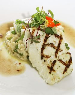 The halibut with risotto instead of fennel.