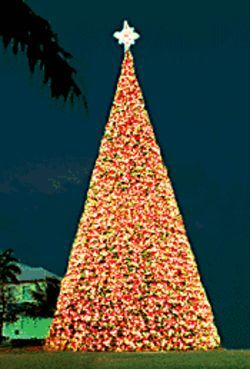 Egyptian pyramid? Or Old School Square's Christmas tree?
