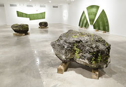 The huge, moss- and dirt-covered rocks came from the center&#039;s front lawn.