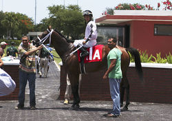 Jockey Jonathan Gonzales and trainer Kirk Ziadie after the horse&#039;s surprise win.